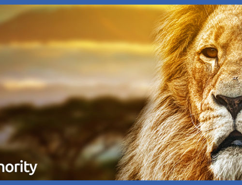 As A Writer, Are You More Like A Lion Or A Sheep?